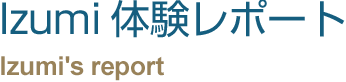 Izumi体験レポート                 Company Profile